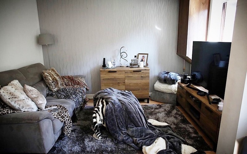 Makeover Tips To Pull Animal Prints For Stylish Interior