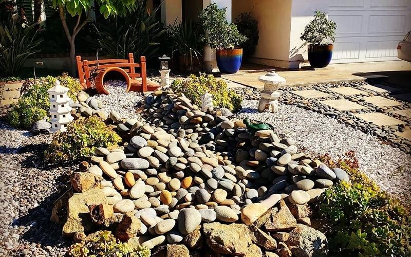 Best Japanese Plants To Grow In Garden For Zen Makeover